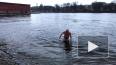 """Петербургские """"моржи"""" купаются в водоемах, пока не ..."""