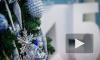 Поздравления с Новым годом 2016 Обезьяны: смешные, прикольные короткие смс в стихах и прозе пользуются популярностью у россиян