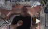 Видео жонглирующих в невесомости космонавтов с МКС покорило Интернет