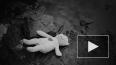 Мигрант жестоко изнасиловал ребенка в центре Петербурга