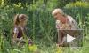 """""""Оплачено любовью"""": съемки 4, 5, 6 серий дались Анне Ардовой через душевную боль"""