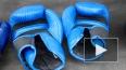 Допинговый скандал вокруг боксера Алояна разгорелся ...