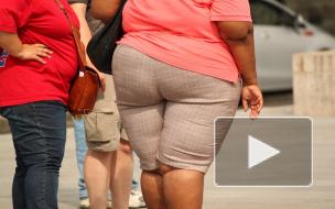 Эксперты заявили, что половина россиянок старше 55 лет страдает от ожирения