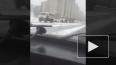 Видео: на Софийской овощебазе задержали несколько ...