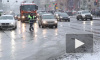 В Петергофе пенсионер устроил массовое ДТП с участием полицейской машины