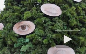 """Какая зима — такая и елка. """"Глазастое"""" дерево у Манежа испугало петербуржцев"""