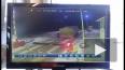 Видео: поезд в Подмосковье протаранил грузовик