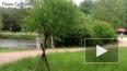 Убийца девушки в Сосновке придавил ее тело бревном