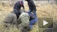 В Татарстане пресечена деятельность террористической ...