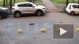 Видео: Неизвестный угнал у инженера иномарку с улицы ...