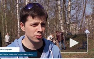 Алексей Туркин на субботнике администрации