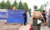 Прокуратура Петербурга запретила вырубку сквера на Камышовой ради магазина