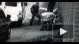 Зверское избиение полицейскими дворника в Подмосковье ...