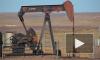Лукашенко рассказал о предложениях по поставке нефти Белоруссии