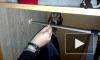 Петербуржец спас маленького совёнка от гибели