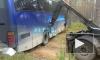 Экскурсионный автобус из Петербурга два часа не могли вытащить из ямы