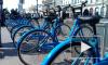 Велосипедную инфраструктуру в Петербурге будет развивать специальный советник
