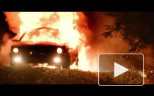 Новый клип Арбениной напугал поклонников