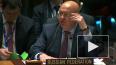 Россия отвергла заявления СБ ООН по операции Турции ...