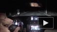 Видео с рыжей собакой, ловко угоняющей машину, покорило ...