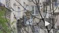 В Петербурге пожарные спасли щенка, которого хозяева ...