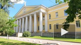 Мариинская больница заработала в обычном режиме: репортаж Piter.TV
