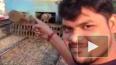 Шокирующие кадры из Индии: Парня сбил поезд на фоне ...