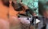 Все происшествия Петербурга за 7 февраля: фото и видео