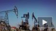 СМИ: в США и Европе отказываются от саудовской нефти
