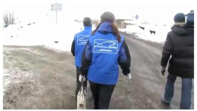Петербургский снег высокотоксичен. Проверено Гринпис