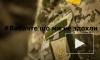 Украинские военные запустили флешмоб #извинитечтомынесдохли