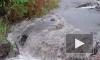 Поселок Рощино затопило из-за непогоды