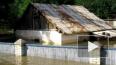 В наводнении на Кубани погибла петербурженка Мария ...