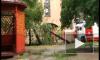 В Петроградском районе дерево упало на детский сад