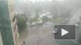 Видео: В Петербурге прошел тропический ливень