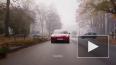 Tesla намерена обрушить цены на электрокары