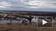 Великий Устюг спасают от наводнения авиаударами ВКС РФ