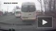 Маршрутки в Петербурге плевали на красный сигнал светофо...