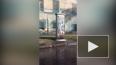 Видео: на Прилукской улице из электрического щитка ...