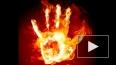 Олимпийский факел поджег в Абакане известного спортсмена ...