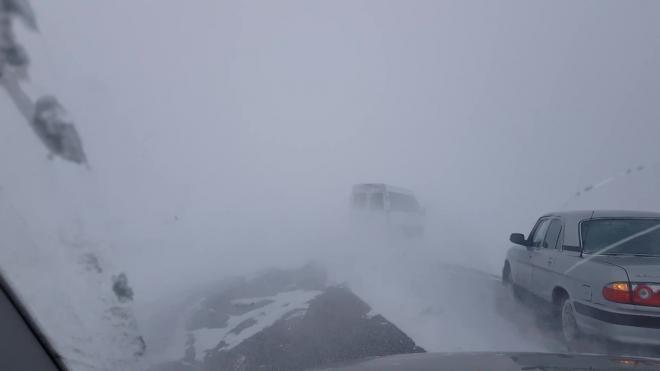 В Челябинской области автобус с туристами застрял на трассе из-за бурана