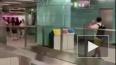 Видео из Гонконга: Дикий кабан набросился на женщину ...