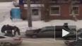 Отважное видео из Воронежа: смелая пенсионерка разняла ...