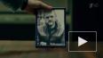 Мажор 3 сезон 7 серия: оперативники расследуют дело ...
