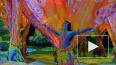 В Петербурге покажут шоу Cirque du Soleil по мотивам ...