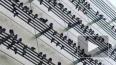 Голубиная музыка: Композитор сочинил мелодию из фото ...