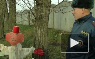 """""""Внимание, засада!"""" Активисты движения """"Синие ведерки"""" выискивали гаишников в кустах."""