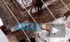 Эксклюзивный аудио-комментарий от очевидца о взрыве СВУ в Таганроге: у мужчины не было руки и лица