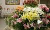 В Ботсаду открывается летняя выставка с лилиями, гладиолусами и георгинами