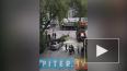Видео: на Варшавской улице упавшее дерево раздавило ...